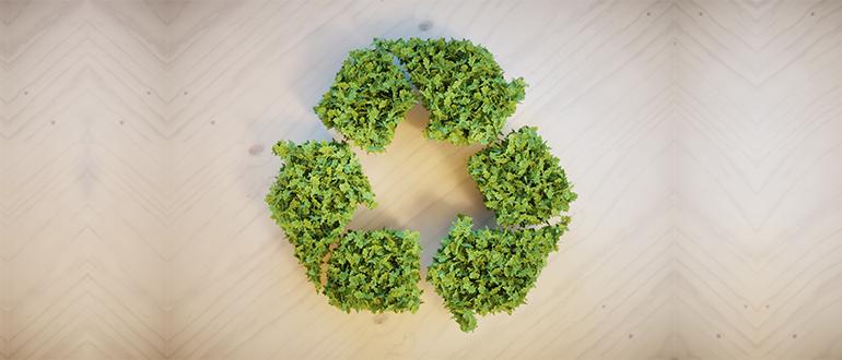 Resultado de imagem para agro sustentável