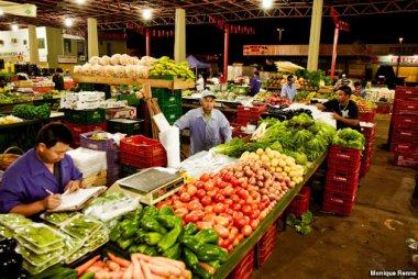 É proibido proibir o fluxo de profissionais das atividades essenciais: o agronegócio